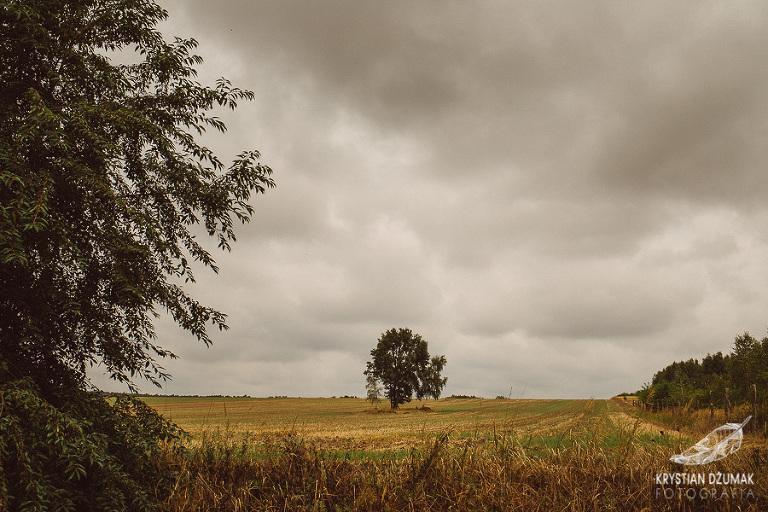 Gościniec nad Prosną, Gościniec sala weselna, nad Prosną, fotograf Wrocław, wesele gościniec nad prosną, krystian dżumak fotograf