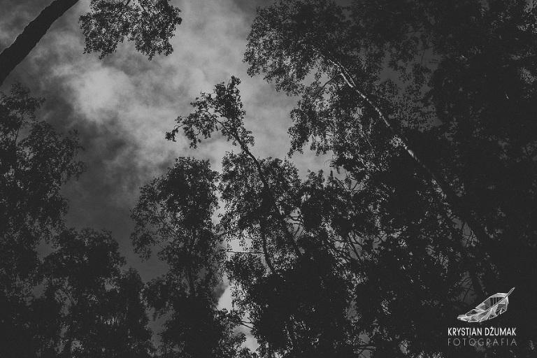 sesja ślubna w lesie, plener ślubny w lesie, sesja  rustykalna, sesja ślubna wydmy, fotograf wrocław, wianek ślubny, krystian dżumak fotograf, plener ślubny dolny śląsk
