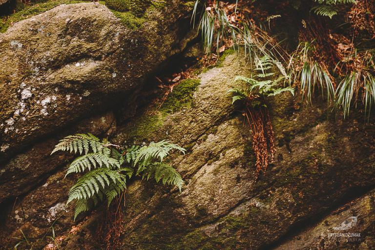 sesja ślubna w górach, plener ślubny nad wodospadem, sesja ślubna nad wodospadem, sesja ślubna karkonosze, zdjęcia ślubne w karkonoszach, fotograf wrocław, krystian dżumak fotografia